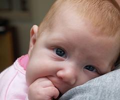 Artículos para bebé gratis
