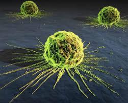 Tratamiento contra el cáncer y sus efectos